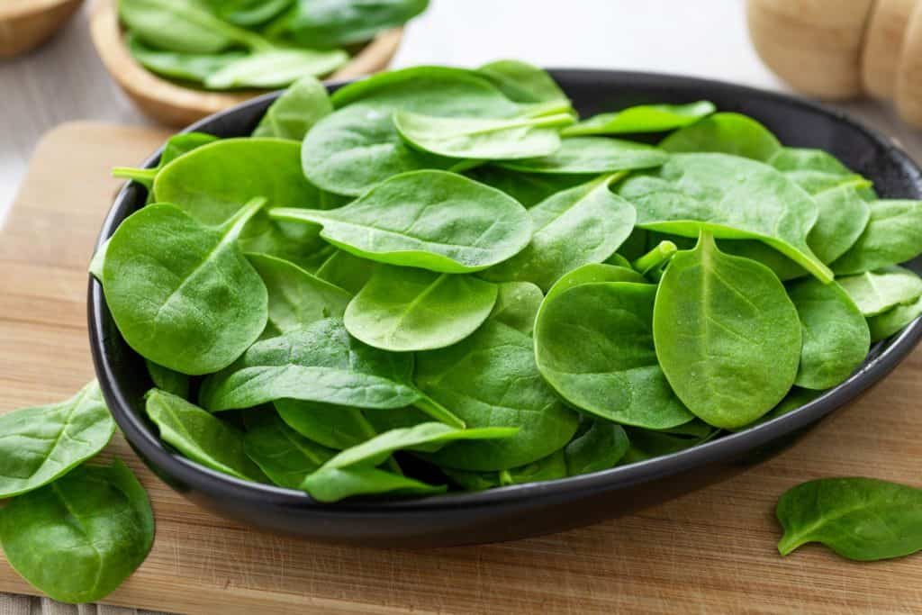 spinach leaves in a grey bowl