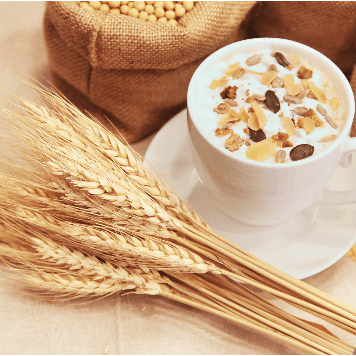 substitute for milk: oat milk in a cup with wheat