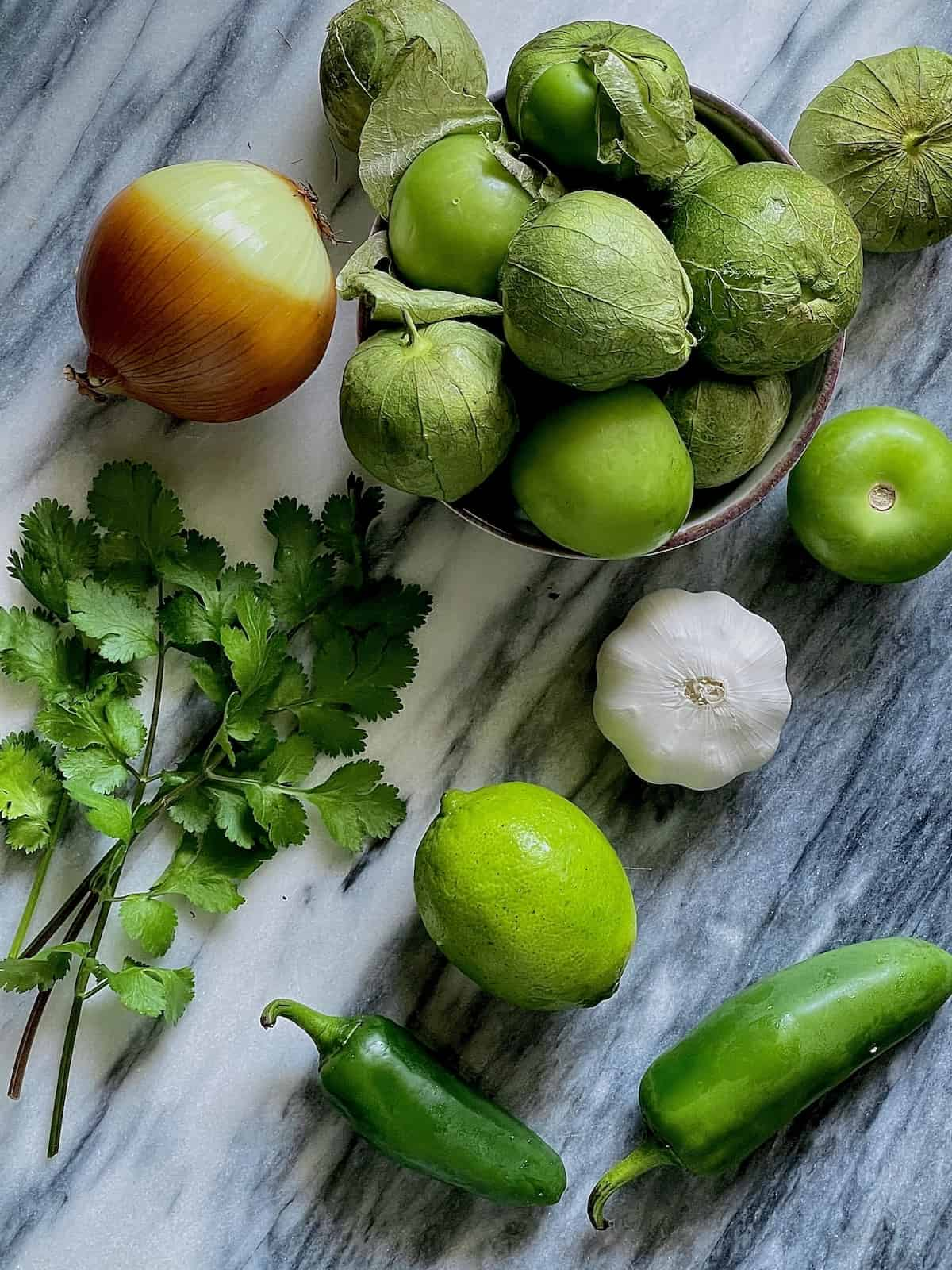 ingredients needed for tomatillo salsa