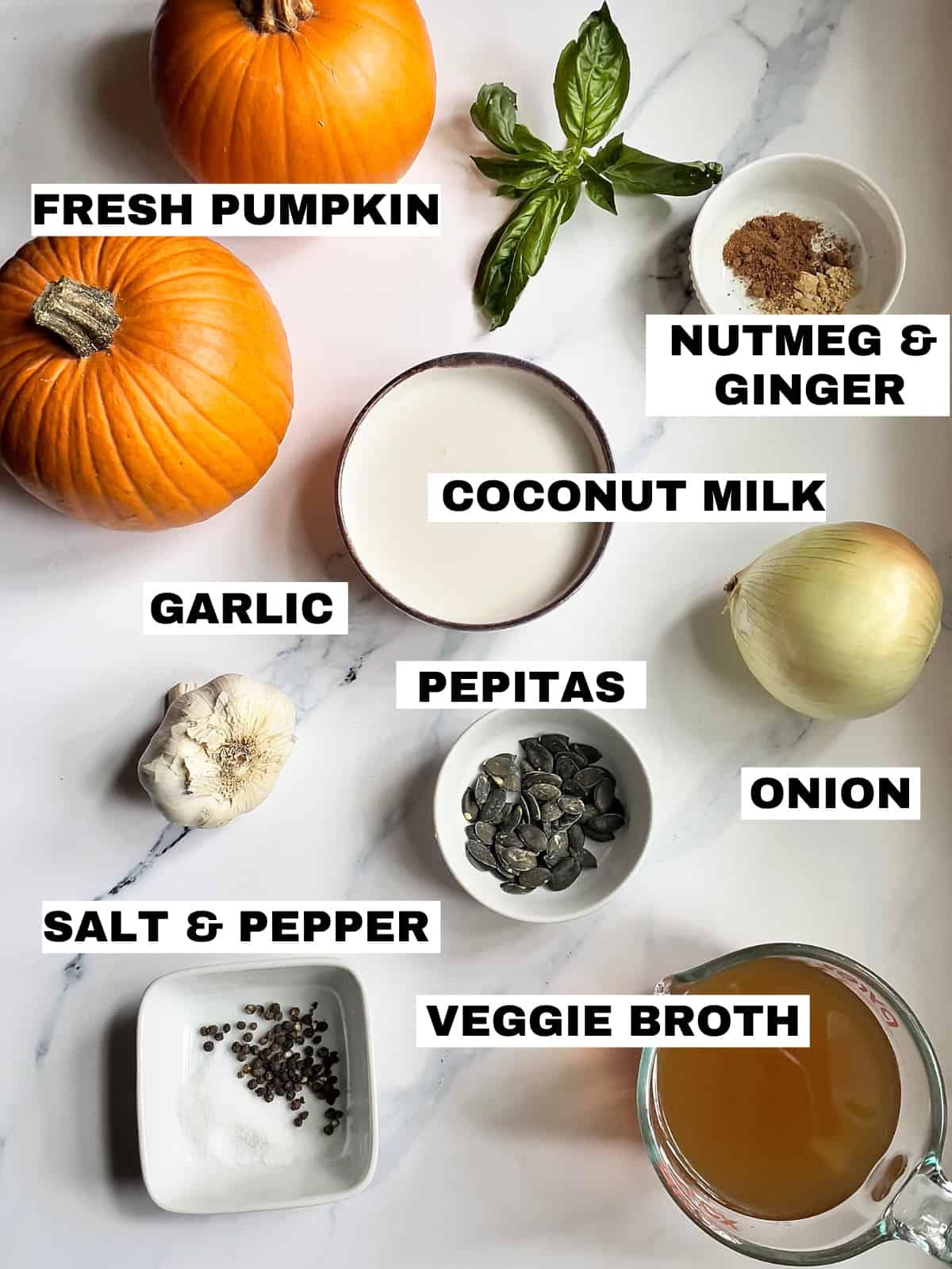 pumpkin, broth, garlic, onion, salt, pepper, nutmeg, ginger, coconut milk and basil on a white background